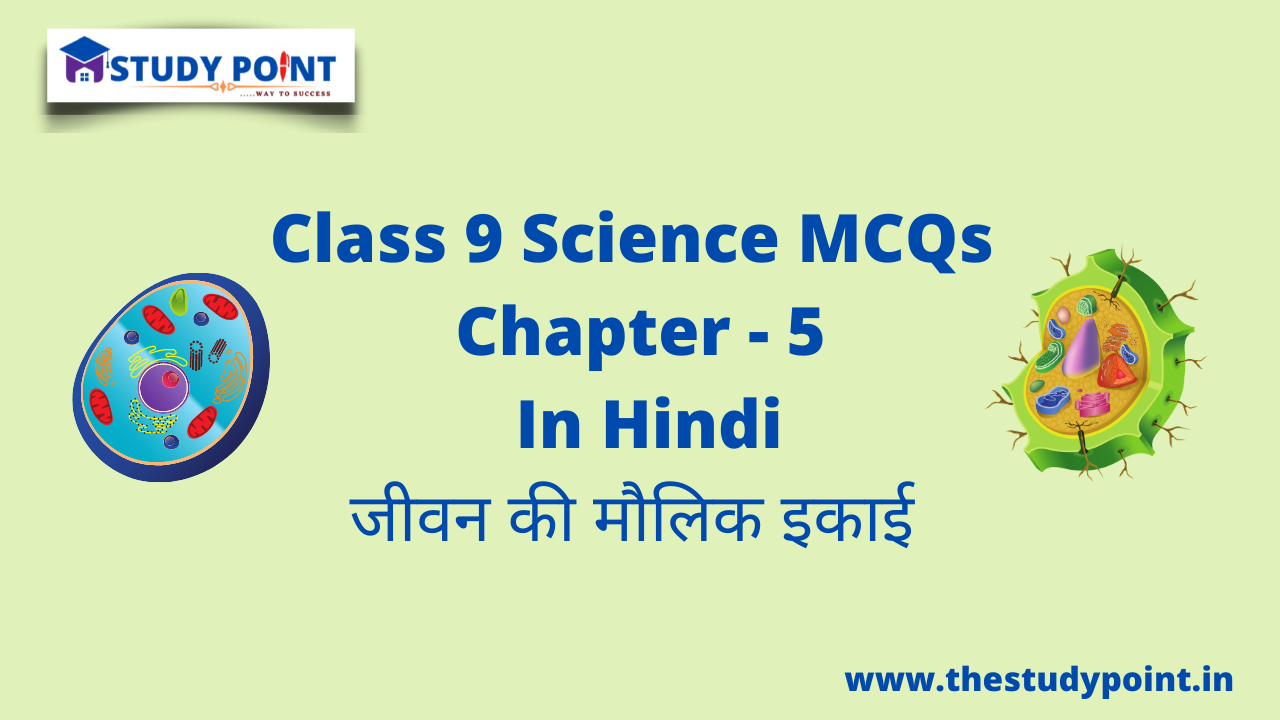 Read more about the article Class 9 Science MCQs Chapter – 5