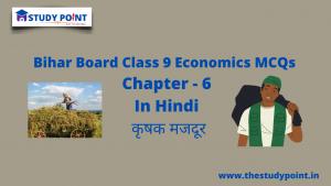 Class 9 Economics MCQs Chapter – 6