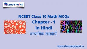 Read more about the article Class 10 Math MCQs Chapter 1 वास्तविक संख्या
