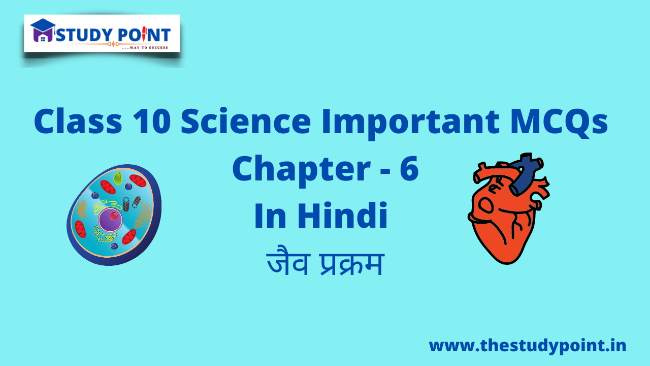 Read more about the article Class 10 Science MCQs Chapter -6
