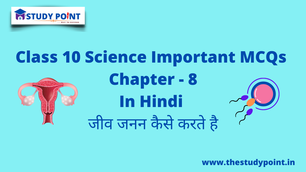 Read more about the article Class 10 Science MCQs Chapter – 8