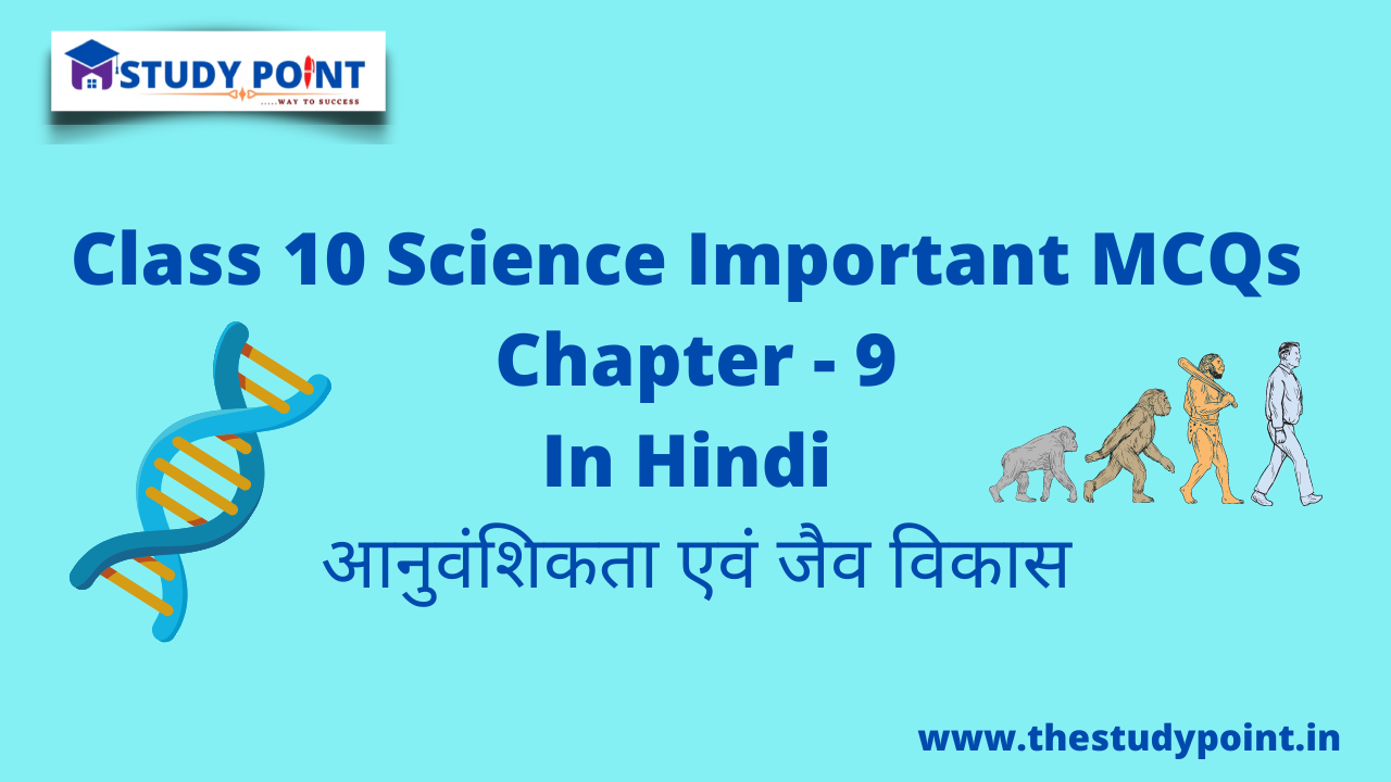 Read more about the article Class 10 Science MCQs Chapter – 9